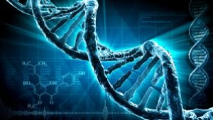 stock-footage-dna-strand